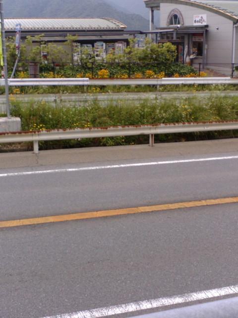 今日は姫路車検(その弐)